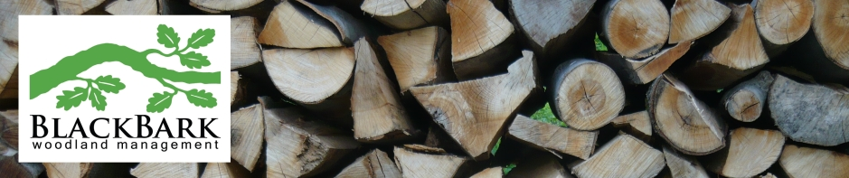 header of firewood